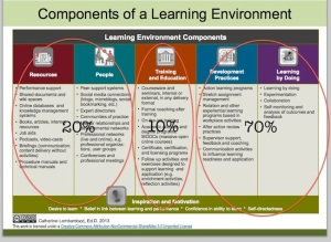 Components of a Learning Environment 70-20-10